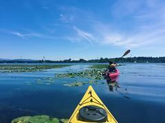 Lake Union (mlee525) Tags: