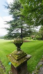 Higham Hall (alh1) Tags: highamhall lakedistrictnationalpark cumbria england urn cedar