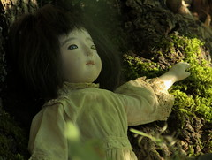 SCRAGGLY_gofun ichimatsu (Fuji Toy?)_1929 (leaf whispers) Tags: insect gofun doll ichimatsu scarydoll ningyo japan japanesedoll bisque vintage antique creepydoll horrordoll freakydoll weirddoll crazydoll sinisterdoll uniquedoll originaldoll artdoll artisticdoll decayedbeauty gofundoll poupee ancienne whitedoll blackhair blackeyes madeinjapan realhair humanhair vintagedoll kawaii goth gothdoll chiaroscuro darkdoll horror possesseddoll spiritdoll haunteddoll ghostdoll ghostly olddoll old toy antiquetoy vintagetoy fondnoir obon ghost kimono bighead bigeyes blackbackground witch witchdoll soundbox squeekerbox fuji papiermache papermache paperwrappedtorso japanese crybox cry box maker artist light retro traditional porcelain hina obsolete