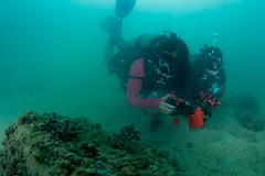 se3500_IMG_1087 (OKANO14) Tags: hong kong scuba diving