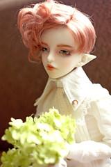 (lookingdivine) Tags: abjd bjd bjdboy doll dollphotography dollboy dollzonefloy dollzone floy