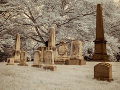 Green-Wood Graves (Adventures in Infrared) (Torsten Reimer) Tags: usa graves monuments northamerica cemetery brooklyn trees unitedstatesofamerica gravestones graveyard nyc newyorkcity grabsteine infrared friedhof greenwoodcemetery infrarot olympusepl5 newyork unitedstates us