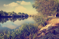 Puente de Piedra (Ro Cafe) Tags: bridge river duero zamora spain landscape reflection nikkor2470f28 nikond600