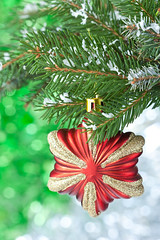 Christmas star. (ZakariaSnow) Tags: christmas new xmas winter red holiday snow tree green glass beautiful closeup pine glitter ball festive season toy gold one shiny december branch symbol bokeh object traditional year joy decoration celebration ornament evergreen twig fir merry tradition shape decor bauble spruce hang