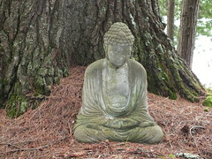 Buddha In Wayne Woods (RonG58) Tags: pictures new trip travel light summer usa color film nature statue forest geotagged photography us photo woods raw day image photos buddha live wayne maine picture images photograph backcountry digitalcamera mori waynemaine fugifilm topshots lafort finepixhs20exr dailynaturetnc12 flickkrsportal rong58