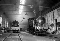 Marley Hill Shed (Kingmoor Klickr) Tags: heritage industry industrial railway steam marley y7 gordonedgar hilltanfield railwaylegends