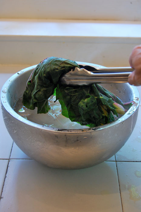 Swiss-Chard-on-Ice