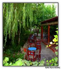 Greek Coffee, Please !  (k.kounalaki) Tags: travel trees plant tree nature colors beautiful island greek village traditional kreta greece crete kriti  anawesomeshot