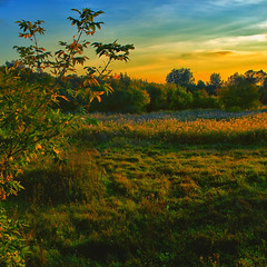 Landscape (Gena Golovskoy) Tags: river landscape evening russia belgorod galleryoffantasticshots rememberthatmomentlevel4 rememberthatmomentlevel1 rememberthatmomentlevel2 rememberthatmomentlevel3