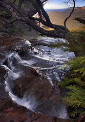 Pocket Of Paradise || BLUE MOUNTAINS (rhyspope) Tags: red panorama plant fern tree green water rock creek forest canon river flow waterfall moss bush woods rainforest stream blackheath flood terrace pano australia bluemountains panoramic boulder falls wentworth pebble photomerge flowing aussie powerful hdr katoomba blend leura rushing gushing 500d northkatoomba rhyspope