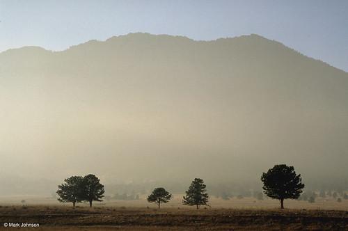Photo - Vista in the Mist