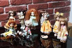 Dollzone event deer's meeting (Moscow, Sept 30, 2012) (Tereska***) Tags: deer dollzone