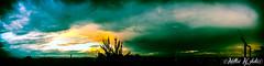 ..Under the Rain... (Matteo Milocco Photograph) Tags: panorama rain clouds thunderstorm pioggia temporale apocalisse