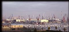 Bosque de gruas (Jose Maria Sancho Aguilar) Tags: espaa photoshop puerto lumix harbor muelle dock spain europa europe bilbao panasonic cranes bizkaia euskadi vizcaya gruas nervin santurce espanya santurtzi puertodebilbao fz38 josmarasancho
