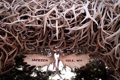 Jackson Hole - Wyoming (Lerion) Tags: jacksonhole lerion