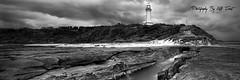 Norah-Head-Lighthouse-Panoramic (Kiall Frost) Tags: ocean trees blackandwhite bw panorama lighthouse beach water sunrise landscape sand rocks pano australia panoramic nsw centralcoast norahhead kiallfrost