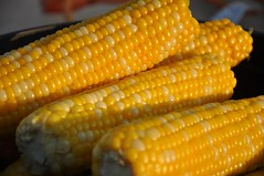 Sweet kernals (the tefts) Tags: bacon corn chopper shihtzu mesquite hotrod barbeque hemi impala perogie showandshine d90 pembina nikond90 thebestjerry d90club mordencorn stnorbertmarket afsdxvrnikkor18105f3555ged mordencornandapple