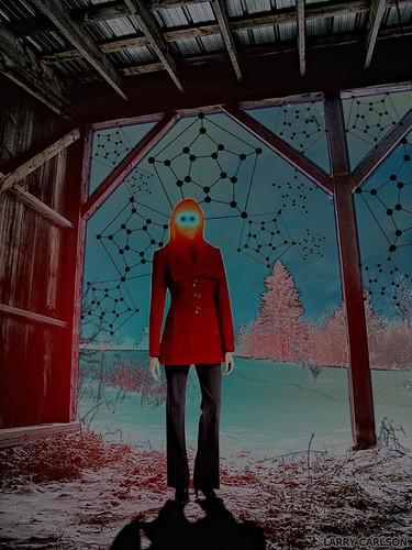 LARRY CARLSON, Pentagonal Webs 2, digital photography, 2012.
