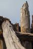 Beached Wood (Craig Attwood) Tags: wood beach porlock weatherd