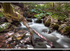 wow das ist (Andrea Ignjatovski ) Tags: water nikon long exposure macedonia hdr beatiful silky reka d90 makedonija planina pejsaz selogari