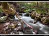 wow das ist (Andrea Ignjatovski ©) Tags: water nikon long exposure macedonia hdr beatiful silky reka d90 makedonija planina pejsaz selogari
