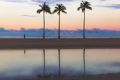 The Morning Run, Hawaii Style (darren.cowley) Tags: summer beach sunrise reflections hawaii waikiki palmtrees exotic tranquil 5am cloudformations darrencowley themorningrunhawaiistyle
