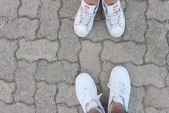 Caminantes, no hay camino (Daniel Garca Palomar) Tags: blanco zapatillas shoes verano white suelo baldosas parque dia luz light day morning camino aventura danielgarciapalomar canon simple bonito adidas