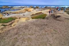 Glass Beach (Oblivious Dude) Tags: fortbragg ftbragg mendocino glassbeach noyoheadlands ca california beach sand ocean d7000 tokina1224 tokina1224mm