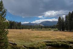 IMG_3571 (dangerismycat) Tags: yosemitenationalpark california mammothpeak kunacrest puppydome tuolumnemeadows tuolumneriver