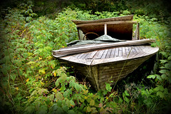 A boat in the bush is worth .........? (pentlandpirate) Tags: abandonned boat wreck restoration restore project speedboat wooden hidden finland suomi pernaja