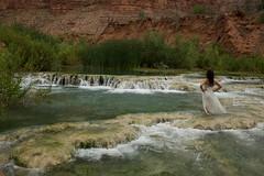 When Love Arrives (OneLifeOnEarth) Tags: onelifeonearth havasu arizona