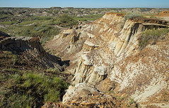Exploring Dinosaur PP, 3, Alberta (Mala Gosia) Tags: kajtek malagosia aug302016 dinosaurprovincialpark alberta ab hoodoo hoodoos outdoor canoneos6d landscape canada badlands rocks rockformation rawtuesday