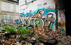 (gordon gekkoh) Tags: nekst nekstforever pcf msk dts d30 tom plantrees detroit graffiti
