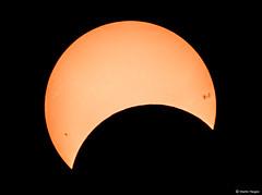 Partial Solar Eclipse (Martin_Heigan) Tags: sun solar son telescope newtonian eclipse sunspots star solarsystem space astronomy martin heigan astrophotography canon 60da celestron gso astrophysics science astro physics southernhemisphere 1september2016 2016 southafrica mhastrophoto annular
