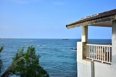 279 (hannaharmstrong20) Tags: hawaii laie beach house ocean lanai palmtrees oahu green outdoor