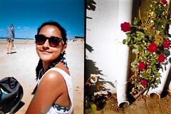 Il De Rey (BeefySquarms) Tags: gabby photoenvy 35mm dianamini thebestofdianamini roses beach flowerandsand lomography brightcolours greattimes sunnydays beautifulbeaches drainpipes niceflowers