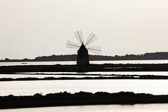 Saline (soloperunp) Tags: marsala biancoenero canoneos450d suset tramonto acqua mare mozia silhoutte mulino mulinoavento
