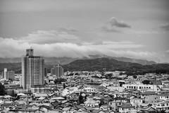 2016918 (atmo1966) Tags: digitalphotography nikon nikond40 ainikkor50mmf14 okazaki aichi blackandwhite