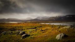 The great wide open (PixPep) Tags: hardangervidda sandhaug norge norway landscape autumn autumncolours beautifullight beautifulcolours pixpep