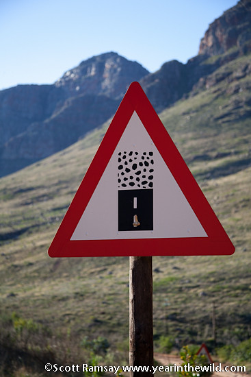 Cederberg Wilderness Area - South Africa
