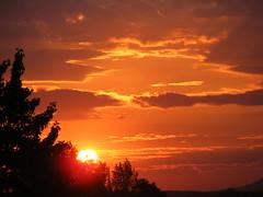 ** Un matin...à Montréal...** (Impatience_1(très peu présente)) Tags: leverdesoleil sunrise soleil sun ciel sky nuage cloud arbre tree clocher belltower orange montréal montreal geneviève mfcc absolutelystunningscapes flickrdiamond naturesfinest supershot coth 100commentgroup ngc bej citrit lovely~lovelyphoto blinkagain thegalaxy coth5 anawesomeshot fantasticnature ruby5 ruby10 ruby15 ruby20 rubyfrontpage explore explorer xplor fabuleuse impatience paysage landscape groupenuagesetciel