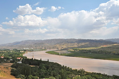 Where yellow river and Tengger Desert meet (cowboy6688) Tags: china yellowriver yinchuan     chinesemuslim tenggerdesert   ningxiaautonomousregion