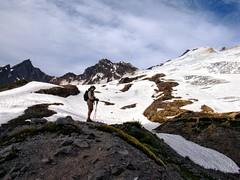 IMG_7175 (d_silva1) Tags: cascades glaciers pacificnorthwest mountbaker northerncascades alpinewildflowers mountbakernationalpark