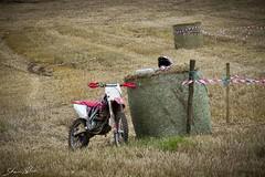 MotocrossCurracloe-23 (Shaun Nolan) Tags: bike race motorbike dirt motorcycle motocross wexford grasstrack curracloe