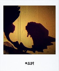 """#DailyPolaroid of 1-9-12 #339 • <a style=""""font-size:0.8em;"""" href=""""http://www.flickr.com/photos/47939785@N05/7961395630/"""" target=""""_blank"""">View on Flickr</a>"""