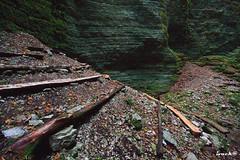 Bus del Buson (ivack@) Tags: park parco nature water rock stone forest canon sigma natura canyon gorge roccia pietra forra dolomites dolomiti ardo bosco veneto delle parcodelledolomitibellunesi bellunesi dolomitibellunesi ivack bellunese busdelbuson bolzanobellunese bellunesidolomitedolomiti