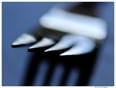 Macro 53 (Brian Gort Wildlife Photography) Tags: macro lens nikon shot sigma fork using f28 105mm d90