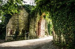 where the knights lived (Schub@) Tags: castle pentax ruine knights tamron f28 landesgartenschau burg k5 mauer ritter badenwrttemberg gemuer nagold 1750mm hohennagold