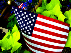 American Lawn (TymaTyma) Tags: plants usa america photoshop stars island saturated midwest nebraska kodak landscaping stripes flag lawn grand pride flags powershot american easyshare landscaped