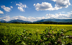 Adirondack Field (PlotzPhoto) Tags: summer sky usa ny newyork mountains green field clouds landscape high open upstate adirondacks upstatenewyork newyorkstate peaks adirondack adirondackmountains